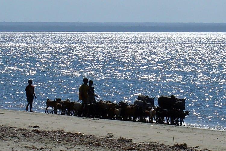 Msimbati Beach 2