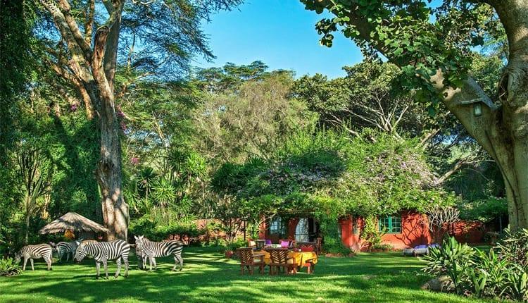 Olerai House Naivasha