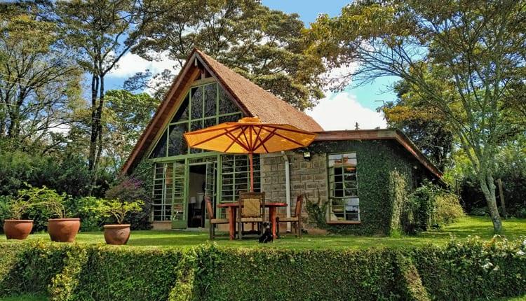 The Kawamwaki Studio, Tigoni