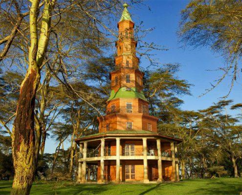 Dodo's Tower